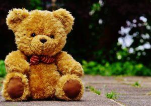 teddy-1444648_1920