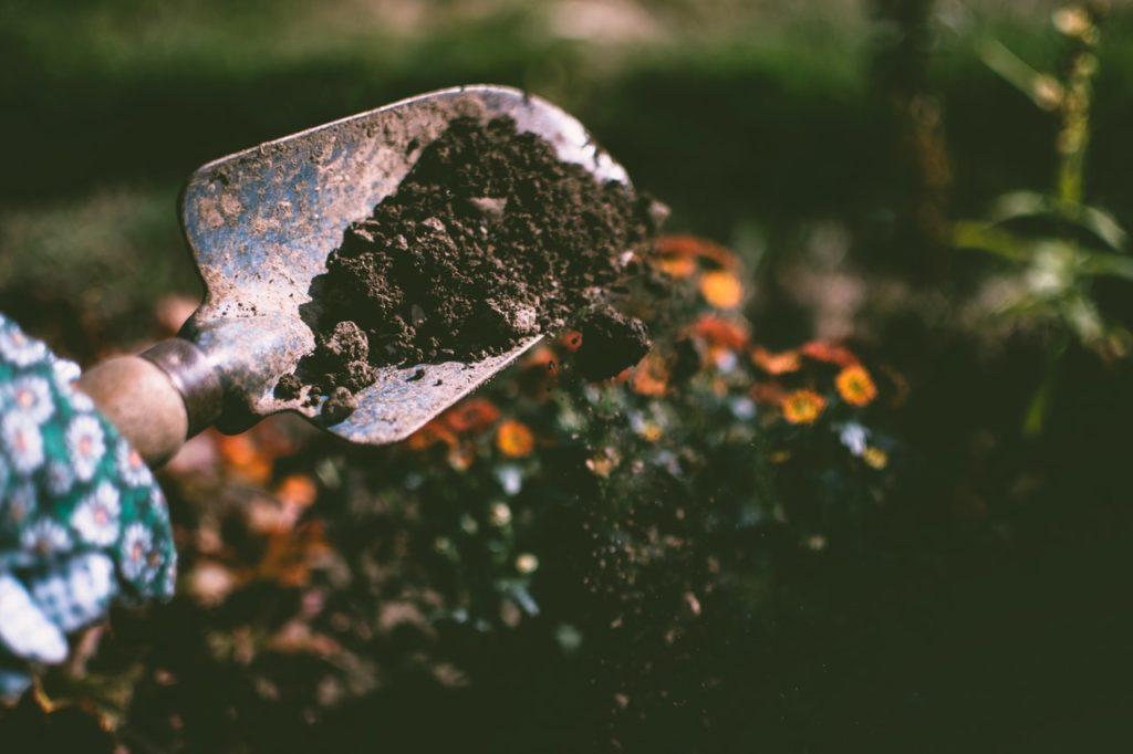 Przygotowanie ziemi pod sadzenie